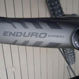 2014 ENDURO EXPERT CARBON 29