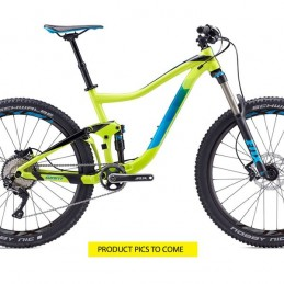 Frameskin for 2017 Trance Alloy 27.5