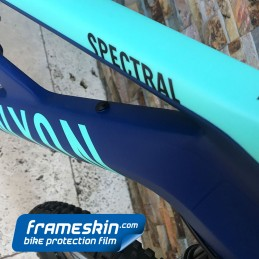 Frameskin for 2019 Canyon Spectral CF