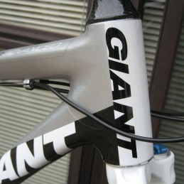 Frameskin for Giant XTC Advanced